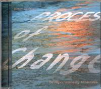 Process of Change - Weg zur Veränderung - CD - Meditation mit Musik