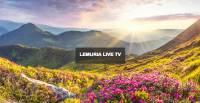 LEMURIA LIVE TV