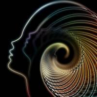 10-Samstag, 3. November - 13:00 bis 18:30 Uhr - Das Potenzial des lichten Schattens