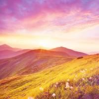 Bewusstsein und Magic - eine ideale Heirat