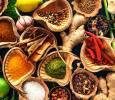 Magisch essen und trinken - Der Speiseplan meiner Guides - 3. Webinar der Reihe: MAGISCH LEBEN wie in LEMURIA